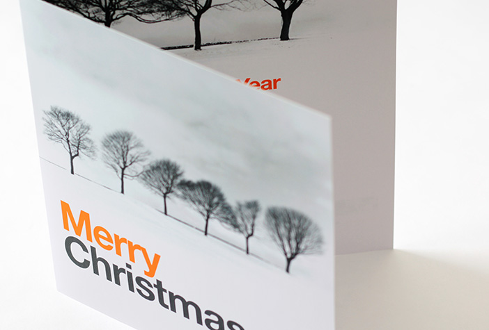 A Trouble Halved Christmas Card